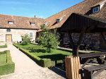 Quittenb�ume im Burghof der Konradsburg