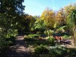 Kräutergarten im Burghof